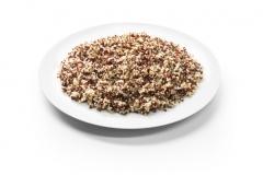 RS7254_Quinoa bicolore