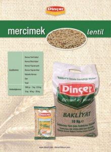 Lentil Dincer